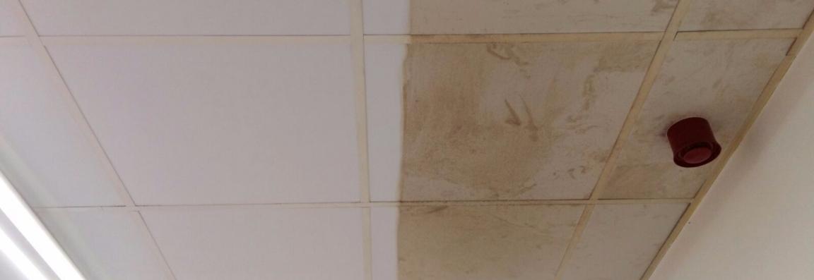 A-limpieza-de-techos-no-porosos-novatec-group
