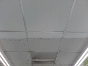 limpieza-de-techos-no-porosos-2016-1