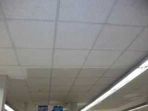 limpieza-techos-porosos-2016-4